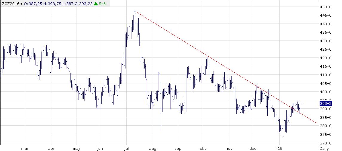 Figur 4. Tekniskt har decemberkontraktet på majs på CBOT brutit den nedåtgående trenden, rekylerat ner till trendlinjen för stöd, och nu inlett vad som ser ut att vara en ny uppgång till 400-410 cent.