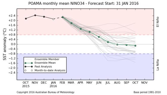 Figur 4. Ensembleprognosen för ENSO från Australiens Meteorologiska Byrå visar nu ENSO på normal nivå från mitten av maj och inga tecken på vare sig El Niño eller La Niña därefter. I tidigare prognos fanns en antydan till övergång direkt till La Niña, med farhågor om torka och högre priser på spannmål och oljeväxter.